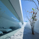 minimalist_house_D31